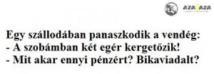 vicc1