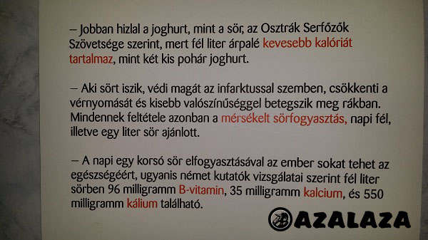 jótékony_sör