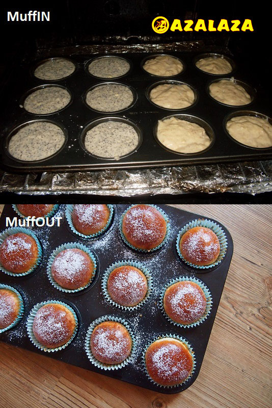 MuffIN-OUT